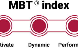 MBT Index - The Levels